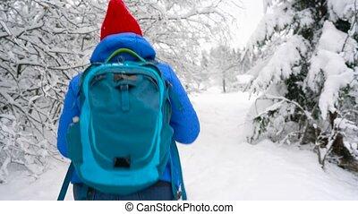 Woman walks along a path among the beautiful winter...