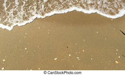 Woman walks along the beach,  sand and the waves of  sea.