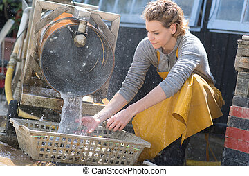 Woman washing oysters in a basket
