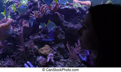 Woman watching the fish in the aquarium - Woman watches the...