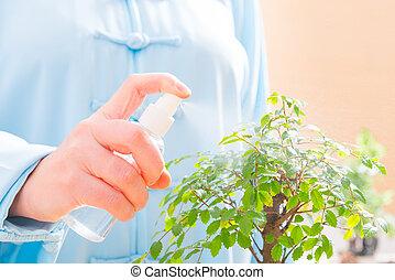 Woman watering bonsai tree