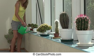 woman watering cactus plant with green watering can in...