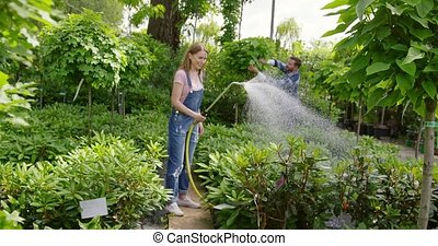 Woman watering plants in garden - Pretty young woman in...