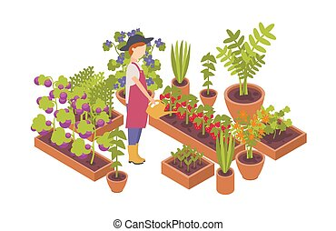 Woman wearing hat and holding watering can and plants ...