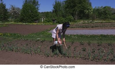 Woman weeding garlic