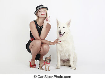 Woman, white sheep dog and chihuahua, sitting in the studio...