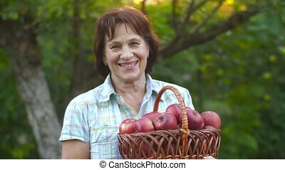 Woman with a lot of apples - Woman in garden with basket of...