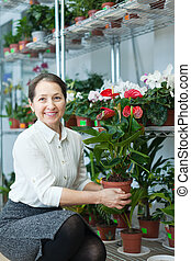 woman with anthurium plant in  store