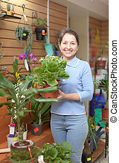 Woman with auricula flower in flower store