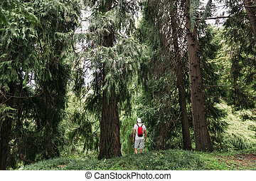 woman with backpack walking in the forest