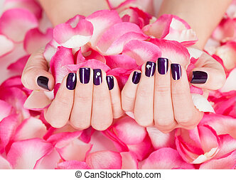 Woman with beautiful nails holding petals - Woman with ...