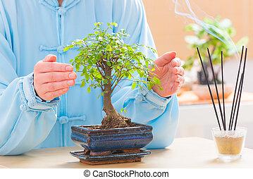 Woman with bonsai tree