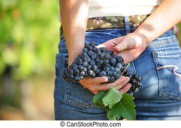 Woman with bunch of grapes in the hands
