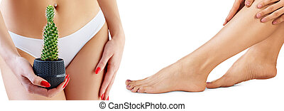 Woman with cactus near panties and legs over white background.