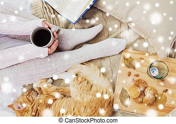 woman with coffee and cat in bed over snow