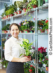 woman with Dieffenbachia  in flower store