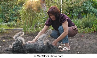 Woman with her dog playing - Happy dog lying on the ground...