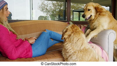 Woman with her dogs on sofa at home 4k - Beautiful woman...