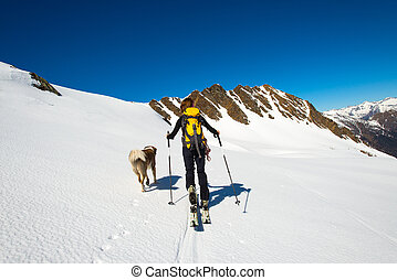 Woman with her faithful dog in the mountains during a ski mountaineering trip