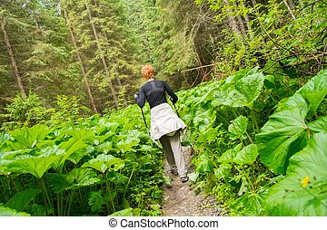 Woman with hiking equipment walking in mountain forest