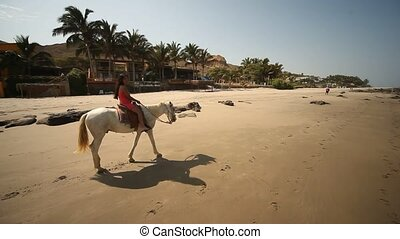 Woman With Horse At Beach