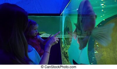 Woman with little daughter exploring exotic aquarium - Side...