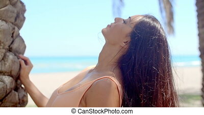 Woman with Long Dark Hair Looking Over Shoulder - Attractive...