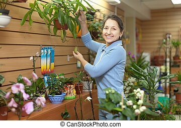woman with  Nepenthes plant