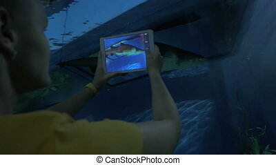 Woman with pad taking shot of sea animal in oceanarium