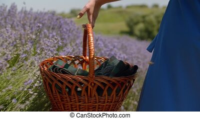 Woman with picnic basket walking in lavender field -...