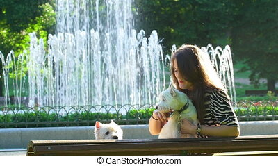 woman with two white terrier dogs doing selfie on bench in park. Static shot