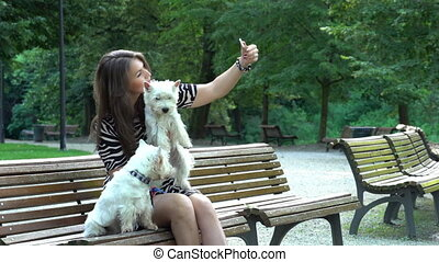 woman with two white terrier dogs doing selfie on bench. Static shot.