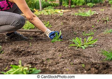 Woman working at garden.