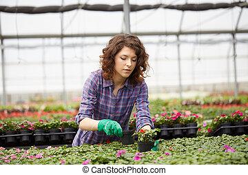 woman working in a plant nursery