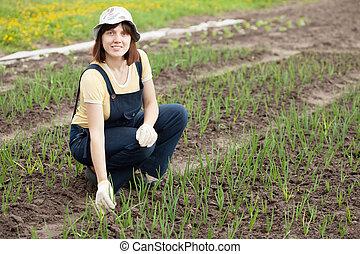 woman  working in field of onion