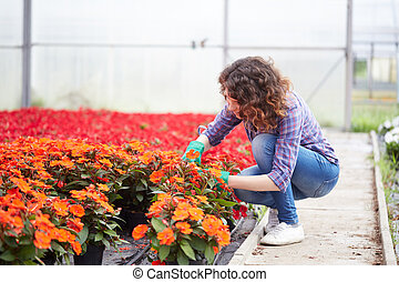 woman working in plant nursery
