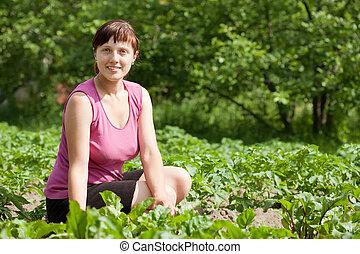 woman working in  vegetable garden
