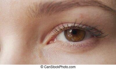 Woman's eye close-up looking around. Brown female eye...