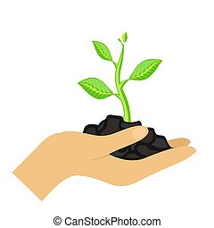 woman's hand are holding green plant on white background, stock vector illustration
