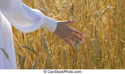 Woman's hand closeup. On the field with wheat