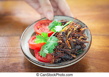 Woman's hand holding fried Crickets in a bowl, Insect food ...