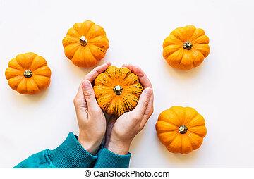 Woman's hand holding small decorative pumpkin.