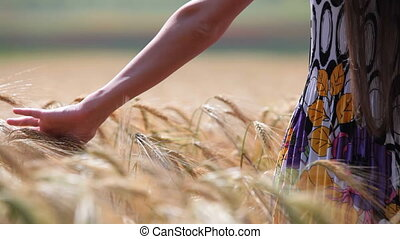 woman\'s hand moving through wheat