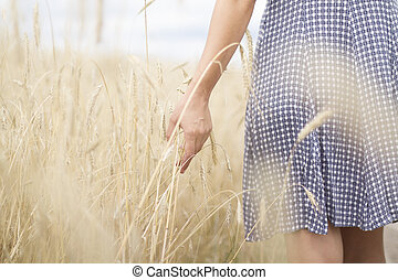Woman's hand on the wheat field