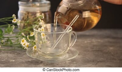 Woman's hand pouring into a glass cup herbal medical flowers camomile tea. Naturopathy. Matricaria chamomilla.