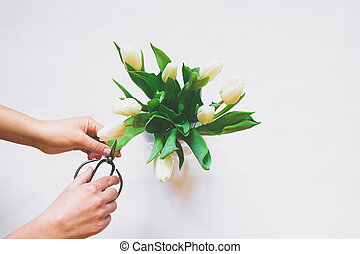 Womans hands care of bouquet of white tulips