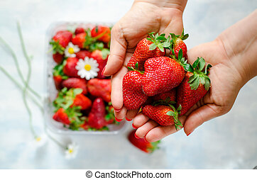 Woman's hands holding Fresh ripe strawberries and berries with Chamomile flowers in plastic box on blue background