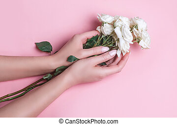 Woman's hands holding fresh white roses buds on pink background. Top view. Flat lay.
