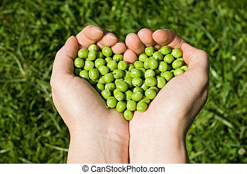 Woman's hands holding green peas