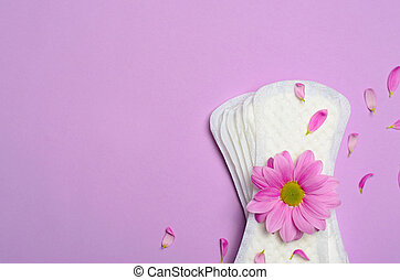 Woman's Sanitary Pads and Gerbera Daisy Flower, Feminine Hygiene Concept